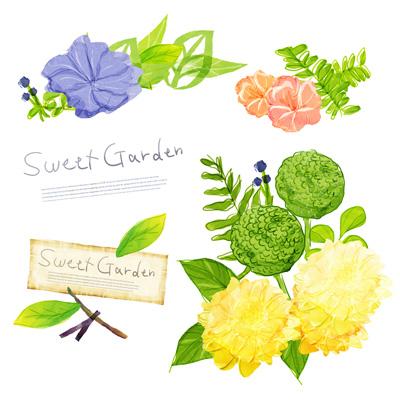 Цветы, нарисованные акварелью