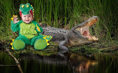 Детский шаблон с крокодилом