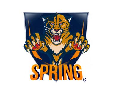 Логотип с тигром для команды или клана