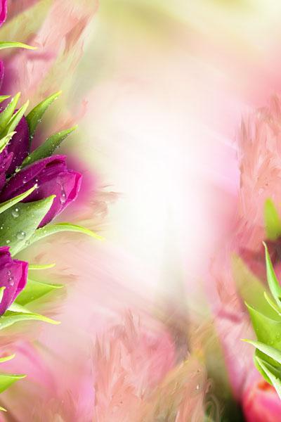 Рамка весенняя с тюльпанами