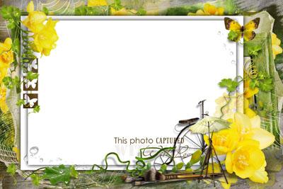 Рамка с желтыми розами