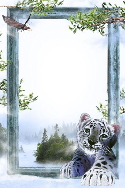 Рамка с тигренком