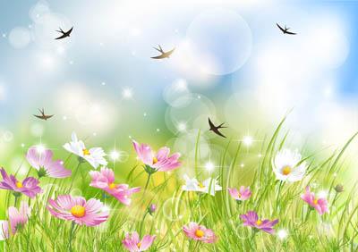 Фон цветочный