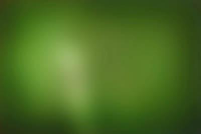 Фон зеленый