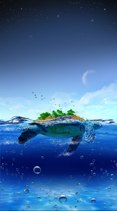 Черепаха на воде